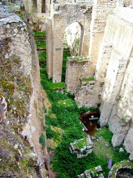 Southern Pool of Bethesda. Setting of John 5. Photo by Leon Mauldin.
