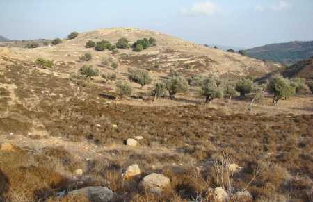 Site of ancient Yodfat. Photo by Leon Mauldin.