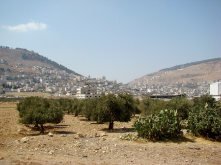 Mt. Ebal (right) and Mt. Gerizim (left). Shechem is at center. Photo by Leon Mauldin.