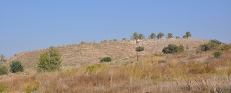 Tel Megiddo. Photo by Leon Mauldin.
