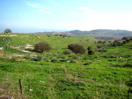 Kedesh in Galilee. One of the cities of Refuge. Photo by Leon Mauldin.