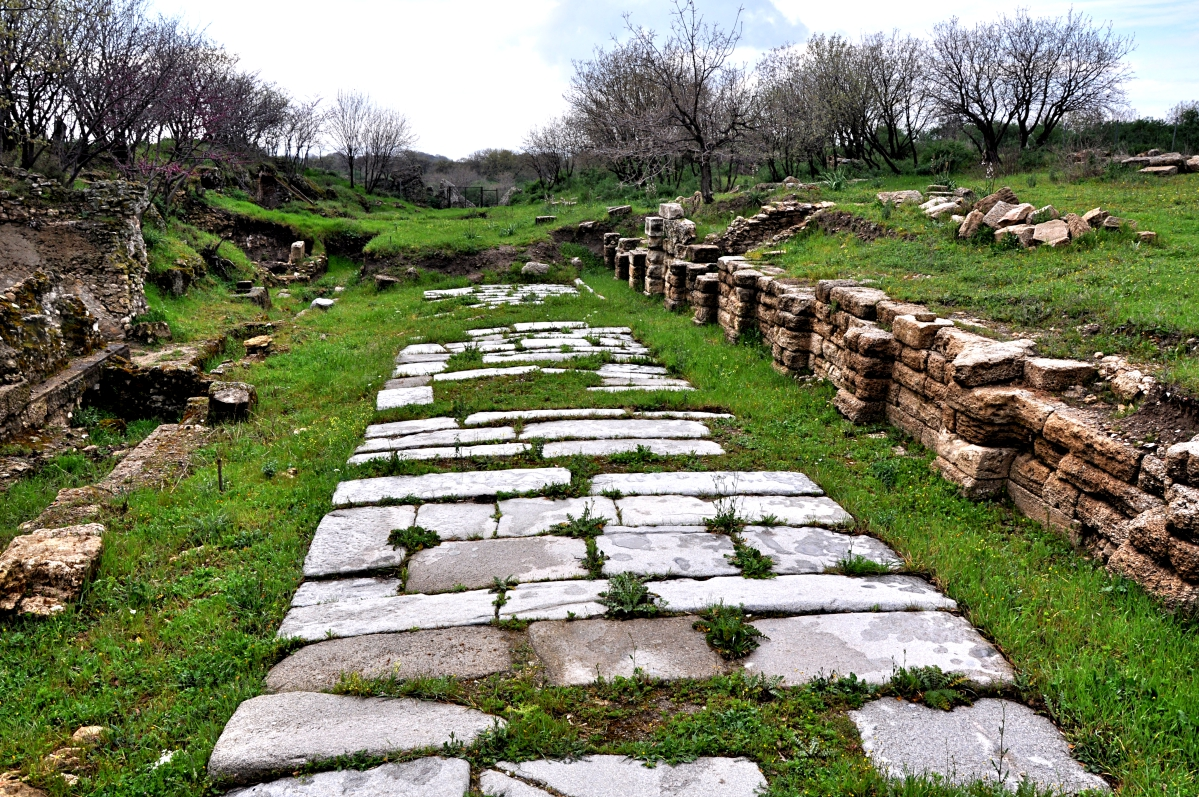 Roman Road at Troas. Led down to the harbor below. Photo by Leon Mauldin.