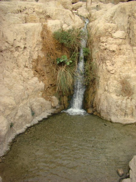 Waterfall at Engedi. Photo by Leon Mauldin.