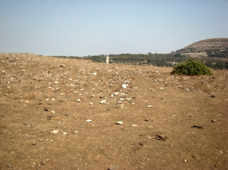 Sde Amudim in lower Galilee looking toward Capernaum. Photo by Leon Mauldin.